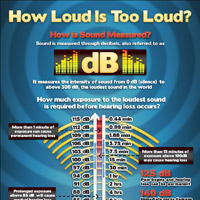 Infographic: At Concerts, How Loud Is Too Loud?